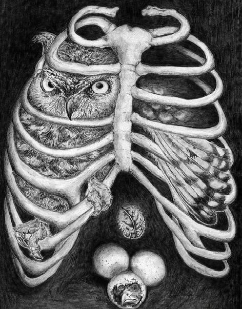 """Alchemist's Cage"" by Nyxaboneflowers"