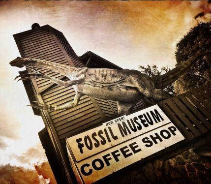 """Brenda Mann Hammack """"Fossil Fuel"""""""