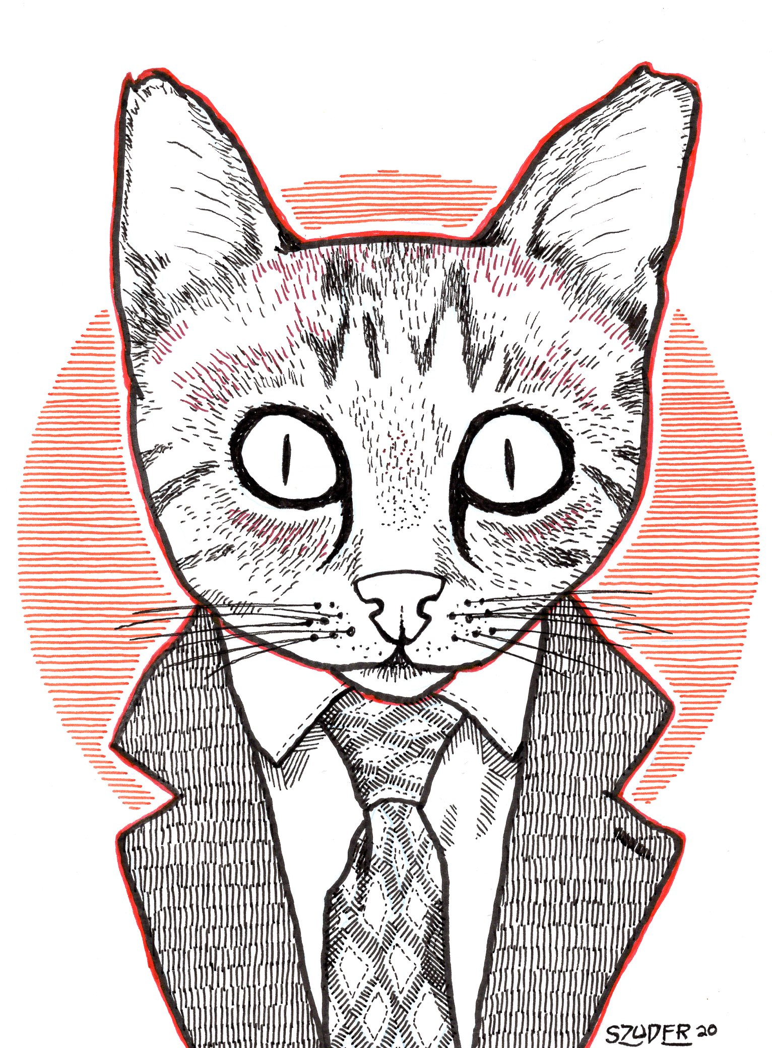 cat wearing a suit coat with tie